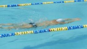 Schwimmenwettbewerb Schwimmerschwimmen zum Ende stock footage