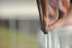 Schwimmer-Anfang Lizenzfreie Stockfotografie
