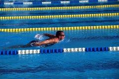 Schwimmer im Swimmingpool Stockbild