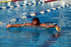 Schwimmer im Swimmingpool Stockfoto