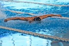 Schwimmer In Pool Lizenzfreies Stockfoto