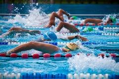 Schwimmer während eines Triathlon lizenzfreies stockfoto
