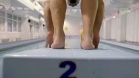 Schwimmeraufwärmen bevor dem Schwimmen stock video footage