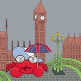 Schwimmkrabbe auf Westminster-Brücke lizenzfreies stockfoto
