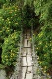Schwingbrücke Stockfotografie