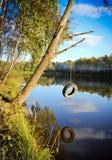 Schwingen über dem Teich lizenzfreies stockfoto
