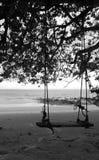 Schwingen auf dem Strand Stockbilder