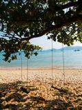 Schwingen auf einem Baum auf einem Strand Stockbilder