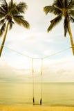 Schwingen auf Kokosnussbaum auf dem Strand Lizenzfreies Stockfoto