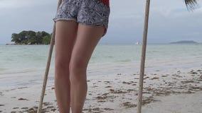 Schwingen bei Seychellen stock footage