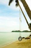 Schwingen mit Baum auf dem Strand Stockbilder