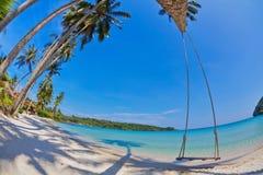 Schwingen und Palme auf dem tropischen Strand des Sandes stockbilder
