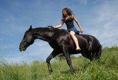 Schwärzen Sie Stallion oben Lizenzfreie Stockfotos