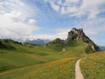 Schynige普拉特瑞士 免版税库存图片