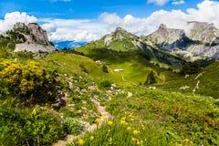 Schynige普拉特,瑞士。 免版税库存照片