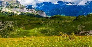 Schynige Platte, die Schweiz. Stockfoto