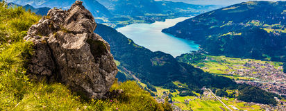 Schynige Platte, Switzerland. Royalty Free Stock Image