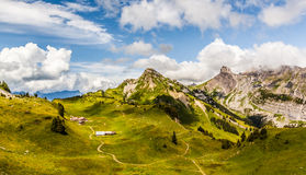 Schynige Platte, Switzerland. Stock Photo