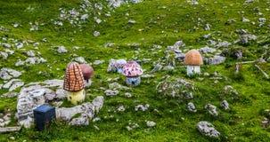 Schynige Platte, Zwitserland. Stock Afbeeldingen