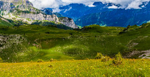 Schynige Platte, Zwitserland. Stock Foto
