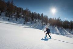 Sci de randonnée Donna con alpinismo delle pelli e dello sci della guarnizione Fotografia Stock