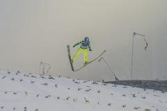 Sci del WC che pilota Vikersund (Norvegia) il 14 febbraio 2015 Immagine Stock