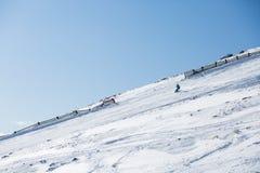 Sci dello sciatore sulla neve fresca della polvere Fotografia Stock