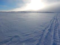 Sci di fondo in bella natura nordica della Lapponia Immagine Stock Libera da Diritti