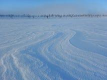 Sci di fondo in bella natura nordica della Lapponia Fotografie Stock
