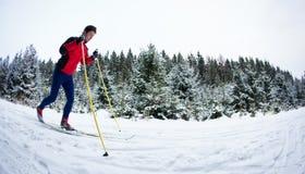 Sci di fondo del giovane su una traccia nevosa della foresta Immagine Stock