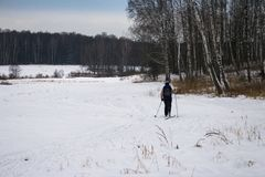 Sci di fondo della donna in foresta russa Immagini Stock Libere da Diritti