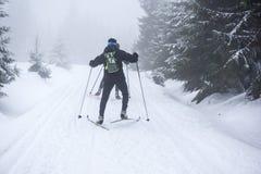 Sci di fondo nelle montagne nell'inverno Fotografia Stock