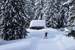 Sci di fondo svizzero delle alpi Immagine Stock Libera da Diritti