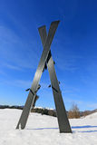 Sci sul campo di inverno Fotografia Stock