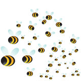 Sciame dell'ape Immagine Stock Libera da Diritti