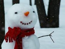 Sciarpa allegra del pupazzo di neve in rosso nella foresta di inverno fotografie stock libere da diritti