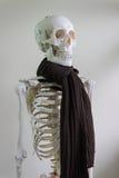 Sciarpa d'uso di scheletro Immagini Stock