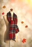 Sciarpa del tartan di inverno Fotografia Stock