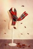 Sciarpa del tartan di inverno con le foglie di caduta Fotografie Stock Libere da Diritti