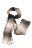 Sciarpa di colore marrone e grigio su un fondo bianco Immagini Stock