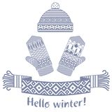 sciarpa di inverno e guanto e cappuccio tricottati Immagini Stock