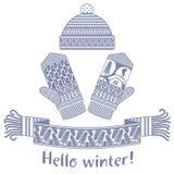 sciarpa di inverno e guanto e cappuccio tricottati Immagine Stock