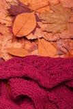 Sciarpa di lana Immagine Stock