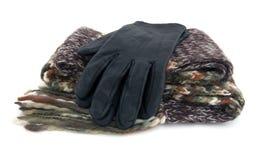 Sciarpa e guanti Immagini Stock