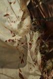 Sciarpa lasciata sulla parete Fotografie Stock