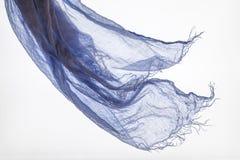 Sciarpa nella porpora del vento Fotografie Stock Libere da Diritti