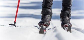 Sciatore di Backcountry fotografia stock libera da diritti