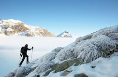 Sciatore di Backcountry fotografia stock