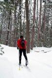 Sciatore nordico nella foresta del pino Fotografia Stock