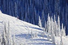 Sciatore sul fianco di una montagna innevato Immagine Stock